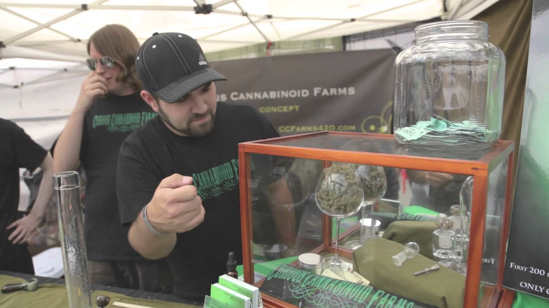 2013 Seattle US Cannabis Cup — Day One
