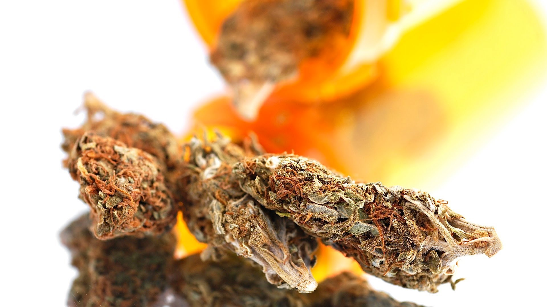 a report on the history of weed or marijuana Early american history: hemp and marijuana as top commodities  but fears of  cannabis returned in the mid 1960s when reports found that.