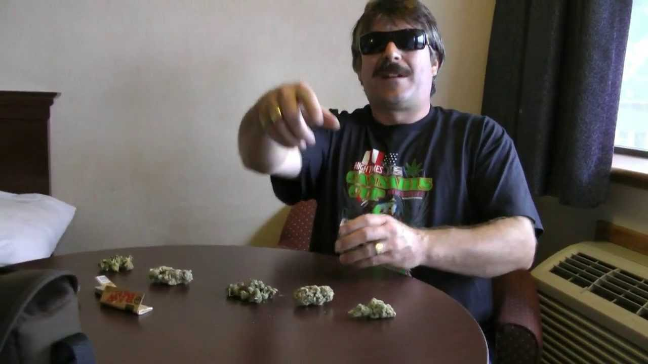 Seattle Cannabis Cup – 5 Kinds Of Weed