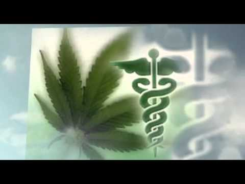 Green Wellness – Medical Marijuana Doctors in Tacoma, WA