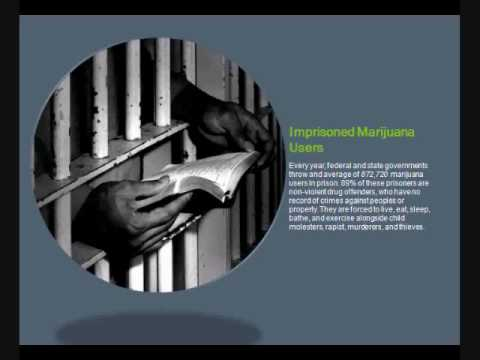 The Facts: Why Marijuana is NOT Dangerous