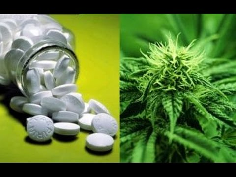 Medical Marijuana Cuts Painkiller Overdoses