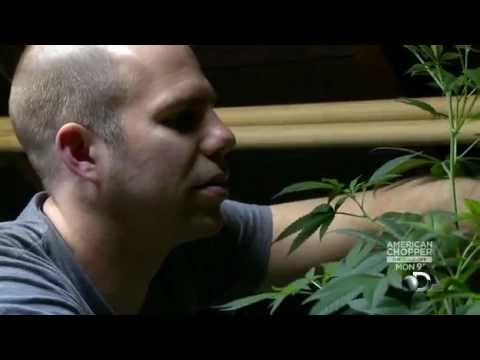 Weed Wars: Worlds Largest Medical Marijuana Dispensary [S01E01]
