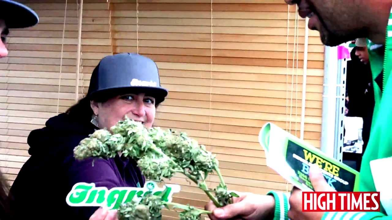 HIGH TIMES Bay Area Medical Cannabis Cup 2013 – Day Two